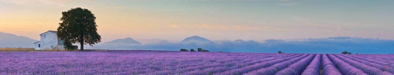 La Colline En Provence